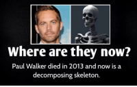 Feel old yet?: Where are they now?  Paul Walker died in 2013 and now is a  decomposing skeleton. Feel old yet?