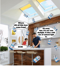 skylight: Where  did all this beer  come from?  oh snap,  fam. It's our new  skylight. It lets a shit  ton of natural light  in.  Natu  SICKI