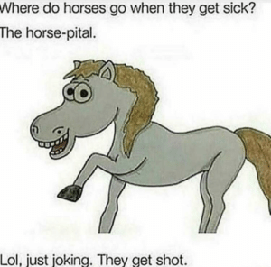 My type of humor via /r/memes https://ift.tt/2FNoAPv: Where do horses go when they get sick?  The horse-pital  Lol, just joking. They get shot My type of humor via /r/memes https://ift.tt/2FNoAPv