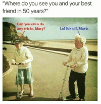 """Best Friend, Lol, and Memes: """"Where do you see you and your best  friend in 50 years?""""  Can you even do  any tricks, Mary?  Lol fuk off, Mavis"""