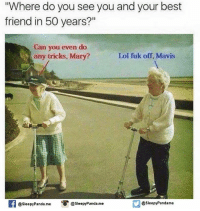 """Best Friend, Memes, and Panda: """"Where do you see you and your best  friend in 50 years?""""  Can you even do  any tricks, Mary?  Lol fuk off, Mavis  If @sleepy Pandame O @sleepy Panda me  @sleepy Pandame"""