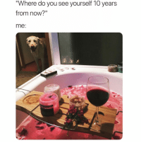 "Funny, Meme, and Teaching: Where do you see yourself 1O years  from now?""  me Also teaching my pupper to mix me drinks @meme.w0rld 😂🙌🏻"