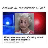 Follow me (@hangars) for more! 😂 Ignore • • • • • • funny memes meme comedy comics cool textpost textposts l4l likeforlike laugh funnypictures pictures funnymemes humor post relateable lol lmao laugh memez tumblr funnytumlr mood haha xd lmfao videos video vine: Where do you see yourself in 40 yrs?  Elderly woman accused of training her 65  cats to steal from neighbors  worldnewsdailyreport.com Follow me (@hangars) for more! 😂 Ignore • • • • • • funny memes meme comedy comics cool textpost textposts l4l likeforlike laugh funnypictures pictures funnymemes humor post relateable lol lmao laugh memez tumblr funnytumlr mood haha xd lmfao videos video vine