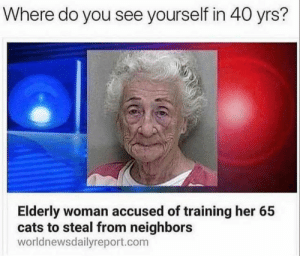Cats, Neighbors, and How: Where do you see yourself in 40 yrs?  Elderly woman accused of training her 65  cats to steal from neighbors  worldnewsdailyreport.com How do you see yourself in 40 years?