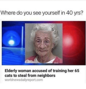 I would be dog for me. by gagansid MORE MEMES: Where do you see yourself in 40 yrs?  Elderly woman accused of training her 65  cats to steal from neighbors  worldnewsdailyreport.com I would be dog for me. by gagansid MORE MEMES