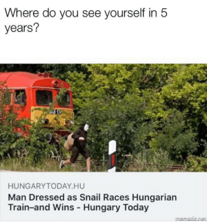 Goals, Memes, and Today: Where do you see yourself in 5  years?  HUNGARYTODAY HU  Man Dressed as Snail Races Hungarian  Train-and Wins Hungary Today Set achievable goals. via /r/memes https://ift.tt/2LKzOcG