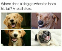 Memes, Retail, and 🤖: Where does a dog go when he loses  his tail? A retail store. 😃