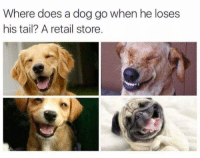 Retail, Dog, and Tails: Where does a dog go when he loses  his tail? A retail store. 😂😂 https://t.co/nOVvJnZLP3