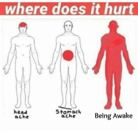 2meirl4meirl: where does it hurt  head  ache  Stomach  ache  Being Awake 2meirl4meirl