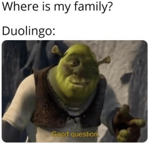 Family, Good, and Question: Where is my family?  Duolingo:  Good question
