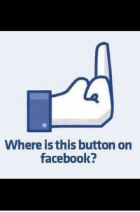 Where is this button on  facebook? I could use this all day everyday!   What say you? ~red~