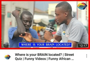Facepalm, Funny, and Videos: WHERE IS YOUR BRAIN LOCATED?  12:17  Where is your BRAIN located?   Street  Quiz   Funny Videos   Funny African.. You are kidding me...