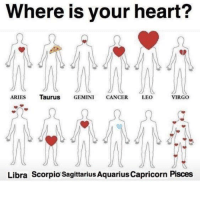 Aquarius, Aries, and Cancer: Where is your heart?  ARIES TauruS GEMINI CANCER LEO  VIRGO  Libra Scorpio Sagittarius Aquarius Capricorn Pisces