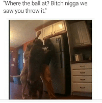 "niggasbelike nochillzone nochill bitchesbelike bruh comedy captionking lml lol lmao lmfao laughs jokes haha hoodmemes funny funnypics funnyshit funnypictures savage awkward petty pettyaf imdead imdone followme funnyaf funnymemes hoodcomedy ratchet: ""Where the ball at? Bitch nigga we  saw you throw it."" niggasbelike nochillzone nochill bitchesbelike bruh comedy captionking lml lol lmao lmfao laughs jokes haha hoodmemes funny funnypics funnyshit funnypictures savage awkward petty pettyaf imdead imdone followme funnyaf funnymemes hoodcomedy ratchet"