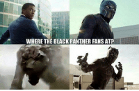 Deadpool, Avengers, and Black: WHERE THE BLACK PANTHER FANS AT ~Deadpool