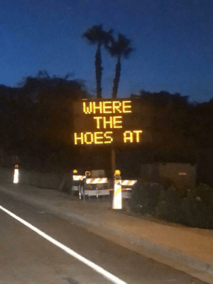 Hoes, Good, and The Hoes: WHERE  THE  HOES AT Good question