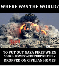 Memes, Netanyahu, and Israeli: WHERE WAS THE WORLD?  fblPray4Pal2  TO PUT OUT GAZA FIRES WHEN  5000 lb BOMBS WERE PURPOSEFULLY  DROPPED ON CIVILIAN HOMES After a call from #Netanyahu, 6 countries sent their planes to help put out fires on occupied Israeli territories. Where were them when #Gaza was burning of Israeli bombardment? I do support Palestine