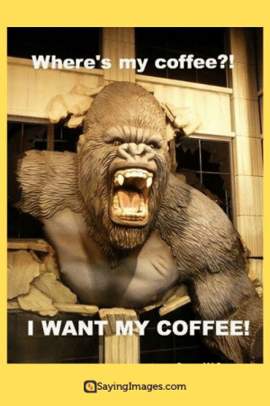 20 Funny Coffee Memes That'll Perk Up Your Day #coffeememes #coffeelovers #memes #funnymemes #humor #sayingimages: Where's my coffee?!  I WANT MY COFFEE!  SayingImages.com 20 Funny Coffee Memes That'll Perk Up Your Day #coffeememes #coffeelovers #memes #funnymemes #humor #sayingimages