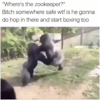 """Go home Sharon 😭😭😭😭😭 IHateZoos ( @pubity ) _ _ _ FOLLOW: ➡➡➡@_IM_JUST_THAT_GUY_____ ⬅⬅⬅ for daily fire posts 🔥🤳🏼: Where's the zookeeper?""""  Bitch somewhere safe wtf is he gonna  do hop in there and start boxing too Go home Sharon 😭😭😭😭😭 IHateZoos ( @pubity ) _ _ _ FOLLOW: ➡➡➡@_IM_JUST_THAT_GUY_____ ⬅⬅⬅ for daily fire posts 🔥🤳🏼"""
