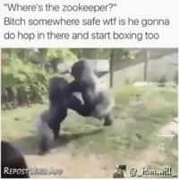 """Anaconda, Ass, and Bitch: Where's the zookeeper?""""  Bitch somewhere safe wtf is he gonna  do hop in there and start boxing too  @-12su冫..:/İ!! Id hop in the ring with them (and 100% get my ass whooped)"""