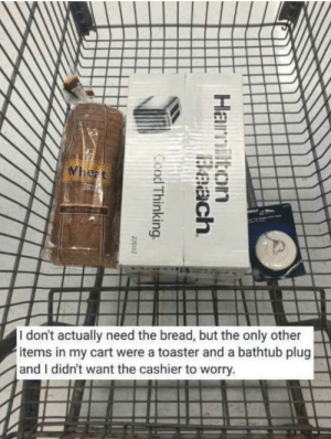 Beach, Good, and Http: Whezt  br  I don't actually need the bread, but the only other  items in my cart were a toaster and a bathtub plug  and I didn't want the cashier to worry.  Hamilton  Beach  Ccod Thinking  220142 Good thinking. Don't want the cashier to have that on their conscience. via /r/wholesomememes http://bit.ly/2VKBgNV