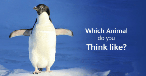 "Friends, Tumblr, and Animal: Which Animal  do you  Think like? playbuzzez:    Which Animal do you Think like?         ""We're not so different from our  animal friends. Take this quiz to find out what animal you're most like  in how you process the world and your surroundings."""