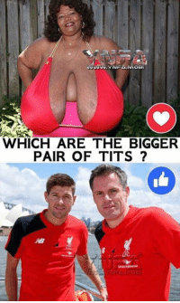 Memes, Tits, and 🤖: WHICH ARE THE BIGGER  PAIR OF TITS?  18