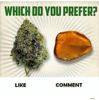 Memes, 🤖, and You: WHICH DO YOU PREFER  LIKE  COMMENT What's your fav @eatweedlove
