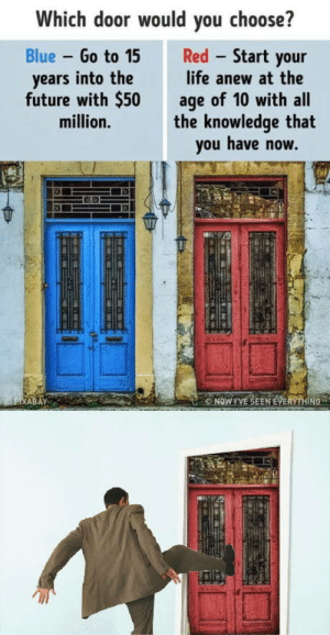 Definitely, Future, and Life: Which door would you choose?  Blue Go to 15 Red Start your  life anew at the  future with $50 age of 10 with all  vears into the  million.  the knowledge that  you have noW.  NOW VE SEEN EVERYTHING Definitely the red one!