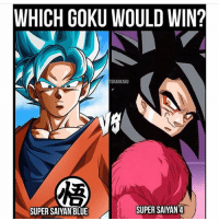 Anime, Bulma, and Dragonball: WHICH GOKU WOULD WIN?  TORANKASU  SUPER SAIYAN BLUE  SUPER SAIYAN 4 Blue. But I like 4 more. Goku Vegeta Beerus Whis Xenoverse2 goten trunks bulma chichi Gohan otaku ssj ssj2 ssj3 ssj4 anime Zwarriors SuperSaiyanBlue Dragonball DragonballZ DragonballGT DragonballSuper Db Dbz Dbgt Dbs anime NamcoBandai over9000