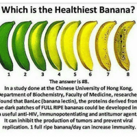 biochemistries: Which is the Healthiest Banana?  The answer is #8.  In a study done at the Chinese Universityof Hong Kong,  Department of Biochemistry, Faculty of Medicine, researche  ound that BanLec (banana lectin), the proteins derived fron  e dark patches of FULL RIPE bananas could be developed in  a useful anti-HIV, immunopotentiating and antitumor agent  It can inhibitthe production of tumors and prevent viral  replication. 1 full ripe banana/day can increase immunity.