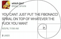 Fuck You, Fuck, and Dank Memes: which ji  @kin  arturia  YOU CANT JUST PUT THE FIBONACCI  SPIRAL ON TOP OF WHATEVER THE  FUCK YOU WANT  9/3/16, 11:58 AM  2 LIKES
