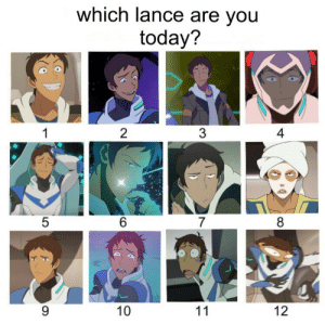 7 8 10: which lance are you  today?  2  4  5  6  7  8  10  12