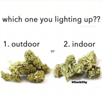 Memes, 🤖, and Lighting: which one you lighting up??  1. outdoor  2. indoor  or  @Dankcity What's your first choice 🤔 @dankcity