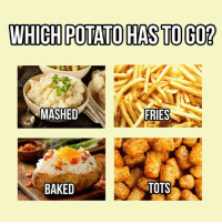 WHICH POTATO HASTO GO?  MASHED  FRIES  BAKED  TOTS Mashed potatoes. Mrs.torres