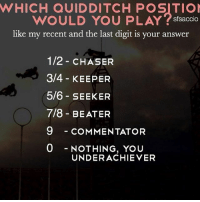 Gryffindor, Memes, and Slytherin: WHICH QUIDDITCH POSITIO  WOULD YOU PLAY stsaccio  like my recent and the last digit is your answer  nke my recent and the last digit is your answer  1/2 CHASER  3/4 KEEPER  5/6 SEEKER  7/8 BEATER  9 - COMMENTATOR  0NOTHING, YoU  UNDERACHIEVER Like my recent post and see the last digit to find out which Quidditch position you would play! 💖 Comment down below! ✨👇 harrypotter thechosenone theboywholived hermionegranger ronweasley gryffindor bestfriends thegoldentrio dracomalfoy theboywhohadnochoice slytherin hogwarts ministryofmagic jkrowling harrypotterfilm harrypottercasts potterheads potterheadforlife harrypotterfact harrypotterfacts hpfact hpfacts thehpfacts danielradcliffe emmawatson rupertgrint tomfelton
