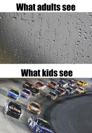 Which raindrop will win by GlipGlopKing28 MORE MEMES: Which raindrop will win by GlipGlopKing28 MORE MEMES
