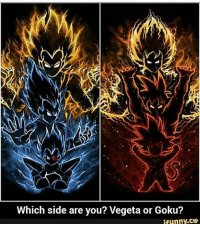 Double tap your side and comment Goku or Vegeta!!!! ~ anime manga otaku japan epic dbkai DBZ dragonballz dragonballsuper kamehameha over9000 20likes goku vegeta whis beerus ssj supersaiyan buu gohan instagram saiyan goku blackgoku vegito gogeta piccolo akiratoriyama bardock: Which side are you? Vegeta or Goku?  funny,CO Double tap your side and comment Goku or Vegeta!!!! ~ anime manga otaku japan epic dbkai DBZ dragonballz dragonballsuper kamehameha over9000 20likes goku vegeta whis beerus ssj supersaiyan buu gohan instagram saiyan goku blackgoku vegito gogeta piccolo akiratoriyama bardock