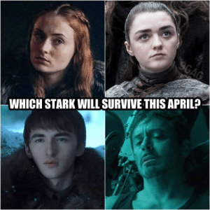 place your bets.: WHICH STARK WILL SURVIVE THIS APRIL? place your bets.