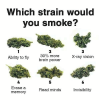 Which one? 🤔 https://t.co/uwpRHiNHFg: Which strain would  you smoke?  2  30% more  brain power  3  X-ray vision  Ability to fly  4  Erase a  memory  5  6  Read minds  Invisibility Which one? 🤔 https://t.co/uwpRHiNHFg