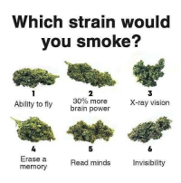 Memes, Vision, and Best: Which strain would  you smoke?  2  30% more  brain power  3  X-ray vision  Ability to fly  4  Erase a  memory  5  6  Read minds  Invisibility Follow @stonerjoke For The Best Stoner Content On IG!🤤