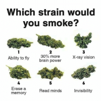 I'd mix them all into a blunt... 😎: Which strain would  you smoke?  3  X-ray vision  2  Ability to fly  30% more  brain power  5  6  4  Erase a  memory  Read minds  Invisibility I'd mix them all into a blunt... 😎