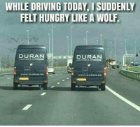 Memes, 🤖, and Duran Duran: WHILE DRIVING TODAY ISUDDENLY  FELTHUNGRY LIKE A WOLF.  DURAN  DURAN  WWW DURAN NL  WWW DURAN NL