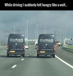 Hungry, Wolf, and World: While drivingl suddenly felt hungry like a wolf.  DURAN  DURAN  DURAN-NL Ordinary world