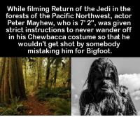 https://t.co/Wn0cwKDUOI: While filming Return of the Jedi in the  forests of the Pacific Northwest, actor  Mayhew, is was given  strict instructions to never wander off  in his Chewbacca costume so that he  wouldn't get shot by somebody  mistaking him for Bigfoot. https://t.co/Wn0cwKDUOI