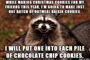 They wont expect it, either.: WHILE MAKING CHRISTMAS COOKIES FOR MY  FRIENDS THIS YEAR, I'M GOING TO MAKE JUST  ONE BATCH OF OATMEAL RAISIN COOKIES.  WILL PUT ONE INTO EACH PILE  OF CHOCOLATE CHIP COOKIES.  made on imgur They wont expect it, either.