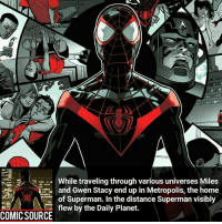 Batman, Facts, and Marvel Comics: While traveling through various universes Miles  and Gwen Stacy end up in Metropolis, the home  of Superman. In the distance Superman visibly  flew by the Daily Planet.  COMIC SOURCE He should team up with Robin _____________________________________________________ - - - - - - - Wolverine Logan MilesMorales spiderman robertdowneyjr SpidermanHomecoming Deadpool Ironman StarWars DarthVader Yoda Hulk CaptainAmerica Daredevil Avengers Shield Thor BlackWidow Hawkeye BlackPanther Marvel Comics MarvelComics ComicFacts Facts Like4Like Like Superman Batman AvengersInfinityWar