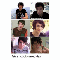 Memes, Hair, and Hobbit: WhiskeryHowlter-IG  fetus hobbit-haired dan remember when we used to dream of dan having full time hobbit hair . • . . • . . • . . phan phandom danisnotonfire amazingphil phanart rfr sherlock danandphil danhowell f4f brendonurie phillester mcr tøp l4l destiel joshdun doctorwho fob tylerjoseph phanproof pinof memes