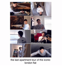 Memes, Happy, and London: WhiskeryHowlter-IG  the last apartment tour of the iconic  london flat I'm actually going to miss their apartment, this is the end of an era im happy for them though