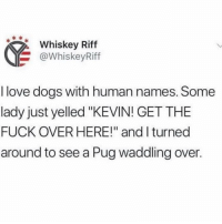 "Cats, Dogs, and Love: Whiskey Riff  @WhiskeyRiff  I love dogs with human names. Some  lady just yelled ""KEVIN! GET THE  FUCK OVER HERE!"" and I turned  around to see a Pug waddling over. Fun fact my neighbor had a dog named Jason and everytime she screamed ""Jason get in the House"" I thought it was domestic violence, but Jason was just chasing cats."